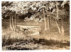 Ansichtskarte der Osterquelle im Sommer 1942