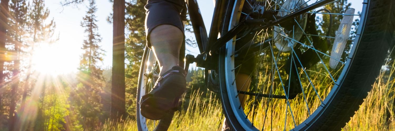Radfahren in Geesthacht